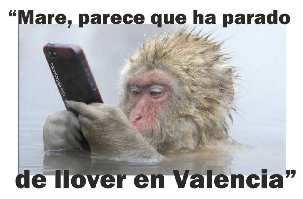 meme-mono-tormenta-valencia