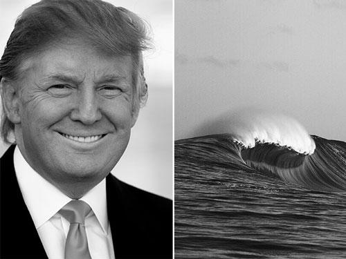 Donald Trump Parecidos Razonables Ola de mar